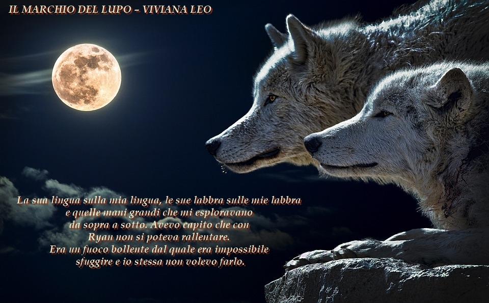 Il-marchio-del-lupo-Viviana-Leo
